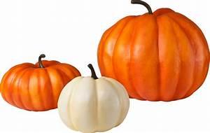 Pumpkin, Png, Image