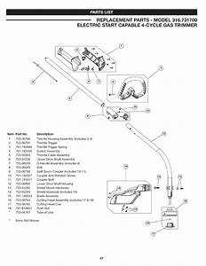 Craftsman 316731700 User Manual Gas Trimmer Manuals And