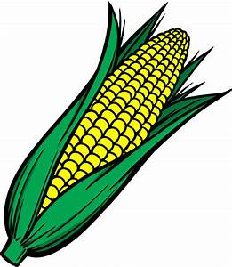 Hand drawn corn vector design Free vector in Encapsulated ...