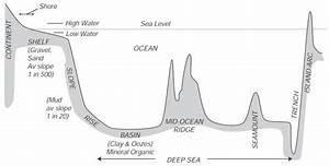 32 Label The Ocean Floor