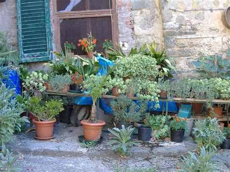 italian courtyard garden design ideas 64 best images about mediterranean gardens on pinterest gardens patio and italy