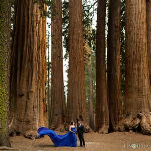 wedding makeup set sequoia national park maternity photography yvette justin