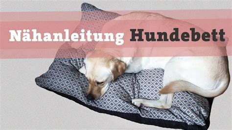 hundebett selber nähen 1000 images about n 228 hen on for dogs running