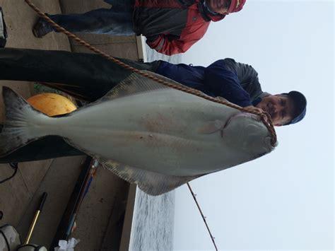 halibut june fish catch oregon waters marine