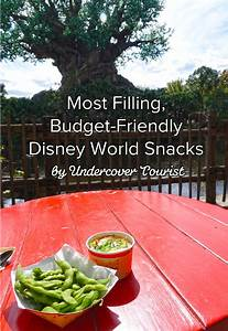 Most filling snacks at Disney World
