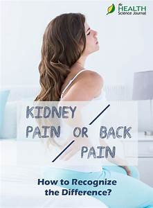 Back Pain Or Kidney Pain  How To Recognize The Difference