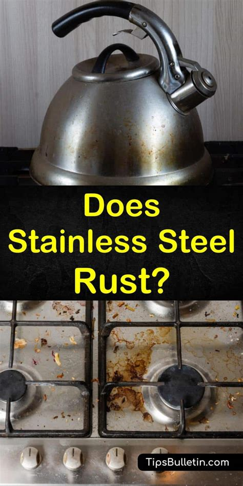steel stainless rust does resistant cleaning qualities cleaners corrosion sinks break down soda baking