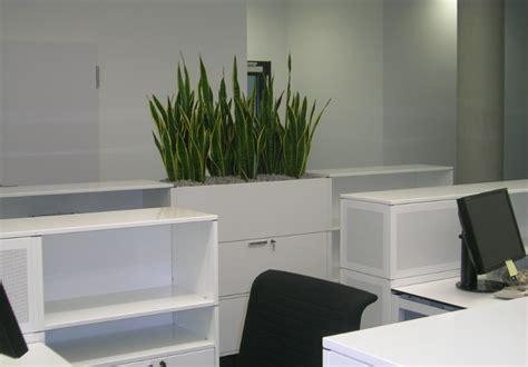 Raumteiler Mit Pflanzen Raumteiler Multiwa Zonieren Und