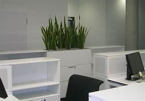 Pflanzen Als Raumteiler : b rom bel mit hydrokulturpflanzen ~ Yasmunasinghe.com Haus und Dekorationen