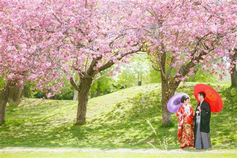 japan honeymoon  wedding vow