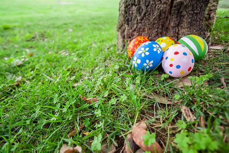 organising an easter egg hunt how to organize an easter egg hunt to remember homes com