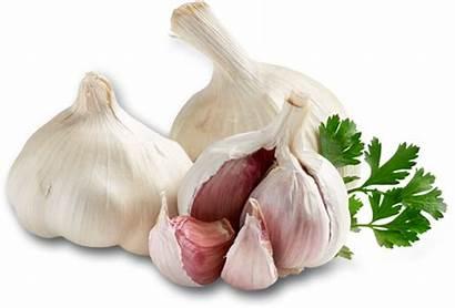 Garlic Onions Ginger Shallots