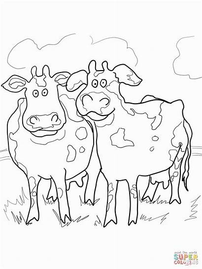 Moo Clack Coloring Pages Cows Type Printable