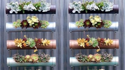 grow  edible vertical garden  winter stuffconz
