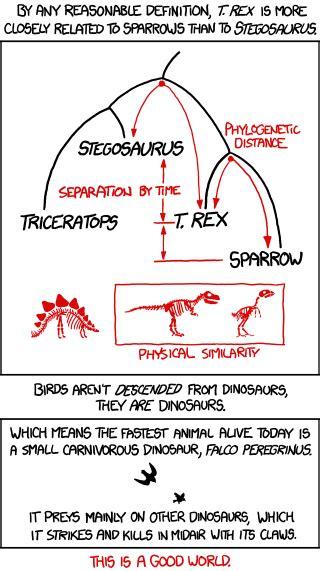 Xkcd Bird Xkcd Birds And Dinosaurs