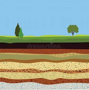 Soil Formation And Soil Horizons Stock Vector