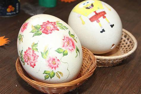 Vislielākās olas īpašnieks - strauss . Un kā dzīvo strausi Latvijā? | Praktiski.lv