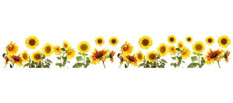Professional Kitchen Design Ideas - wallpops sunflowers border wall decal reviews wayfair