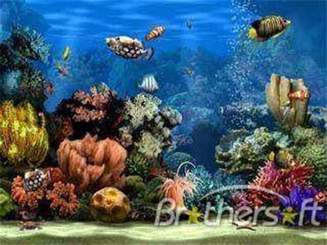 Living Marine Aquarium 2 Animated Wallpaper - wallpaper living marine aquarium wallpaper