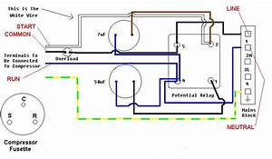 Copeland Potential Relay Wiring Diagram