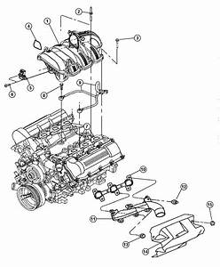 2000 Dodge Dakota Exhaust System Diagram  2000  Free
