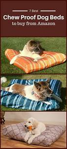 Best chew proof dog bed to buy from amazon dog beds and for Cheap chew proof dog bed