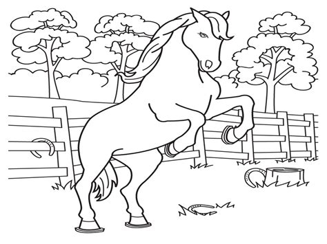 Baby Horse Coloring Pages Baby Horse Drawing For Kids Cute