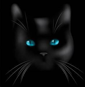 Black cat blue eye vector Free vector in Encapsulated ...