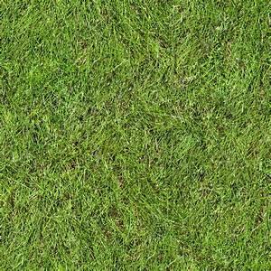 Texture bmp grass texture map