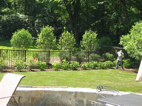 landscaping around fence 22 superb landscaping ideas around pool fence izvipi com