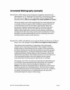 College Essays, College Application Essays - Annotated ...
