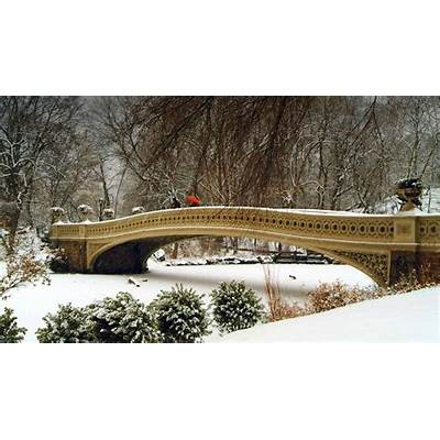 Bow Bridge in Central Park New York City