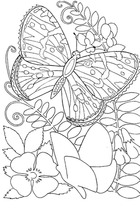 easy adult coloring pages pictures  pin  pinterest