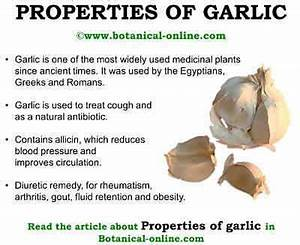 Medicinal properties of garlic