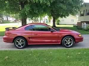96 Mustang Cobra - MustangForums.com