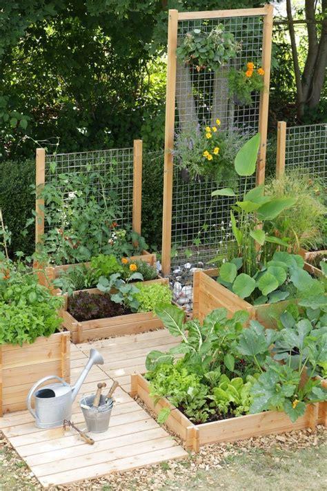 garden ideas ideas  pinterest gardening
