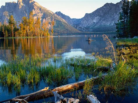 grand teton national park lake jackson  mount moran
