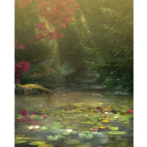 fantasy pond printed backdrop backdrop express