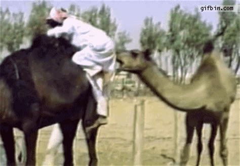 louis farrakhan tells jay    responsibility