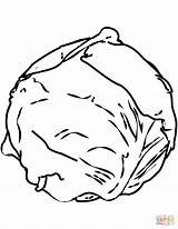 Cabbage Coloring Pages Clipart Cabbages Drawing Printable Vegetables Paper Puzzle sketch template