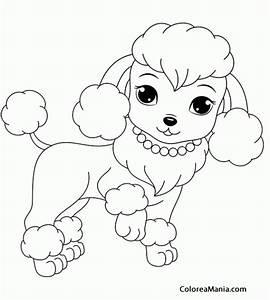 Dibujo De Perrito Para Colorear Colorear Perrita Caniche
