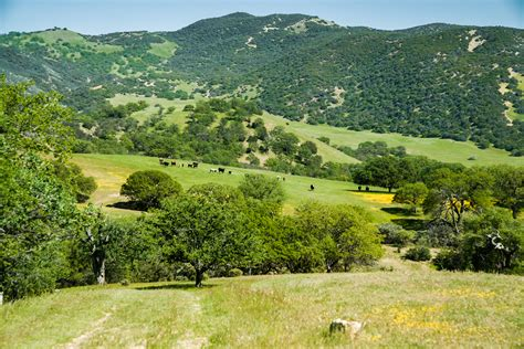 For Sale California by California Land Property For Sale Ca