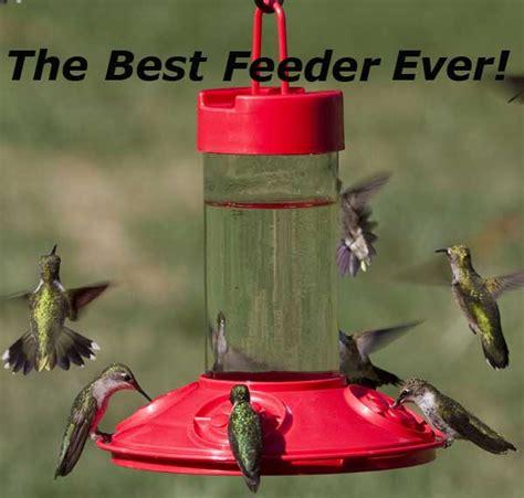 dr jbs red hummingbird feeder