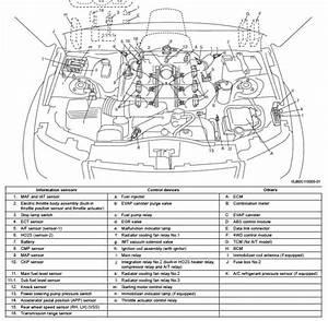 Suzuki Gran Vitara Map Sensor Malo