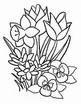Bouquet Coloring Flowers Pages Printable sketch template