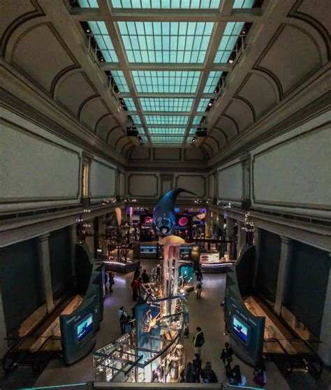 dc museums smithsonian natural history washington museum favorite guide