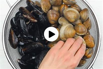 Mussels Clams Seafood Clam Clean Spring Jewel