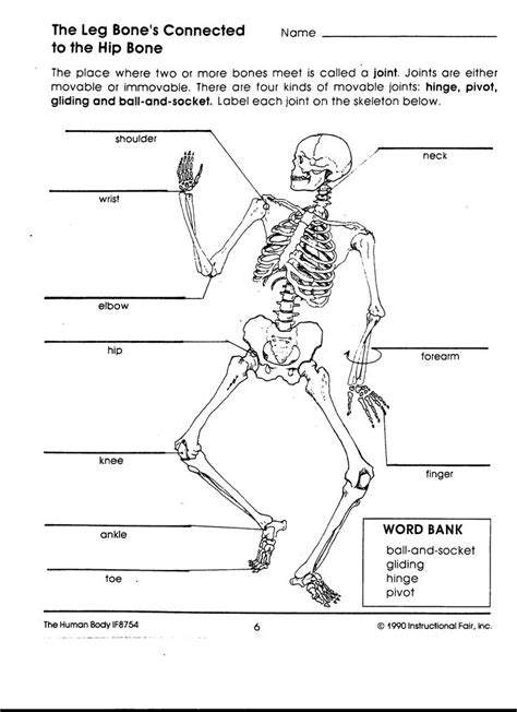 Human Body Interactions  Mrs O  Earth Science  Pinterest  Human Body, Worksheets And School