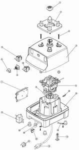 Ninja Blender Parts Diagram