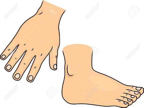 Pencil And In Color Feet Clipart Human